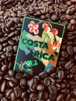 cuppers-costa-rica-coffee-b